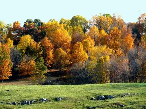 Spectacular Autumn Day!