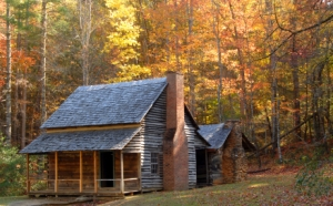 Log cabin in a wooded setting during the autumn season