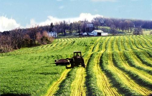 farmer-field