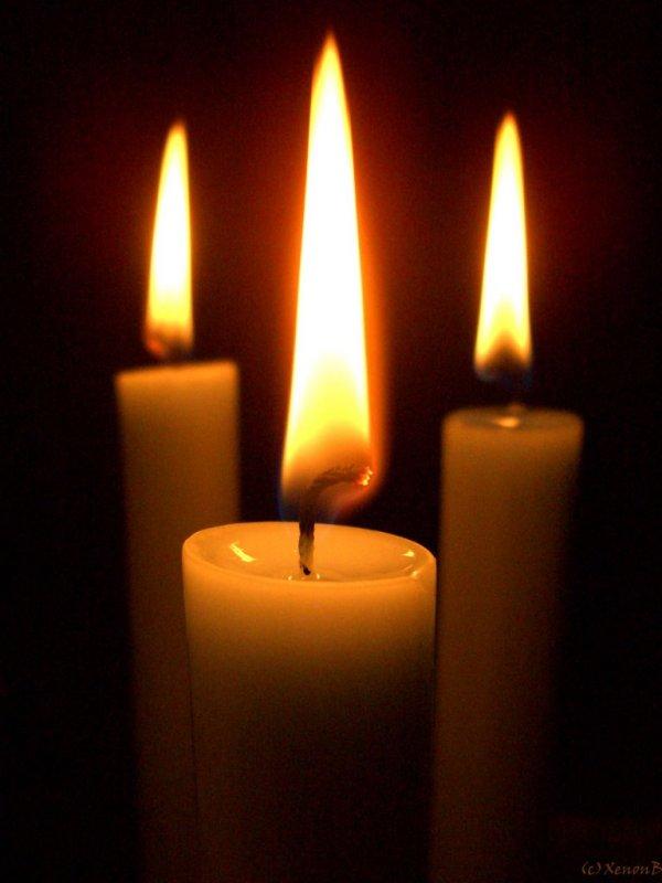 3-lit-candles-7123471.jpg?w=600