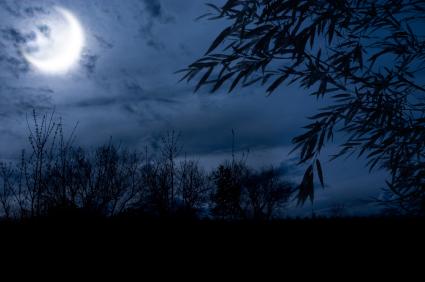 http://bethtrissel.files.wordpress.com/2010/11/autumn-night.jpg