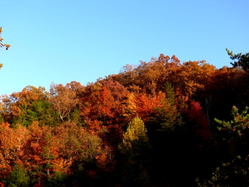 the Allegheny Mountains toward Reddish Knob