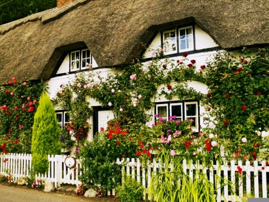 English Cottage Garden One Writers Way