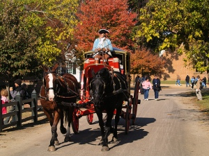 horse and carriage -colonial williamsburg