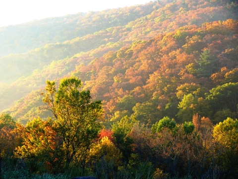 The Alleghenies, the Virginia colonial frontier