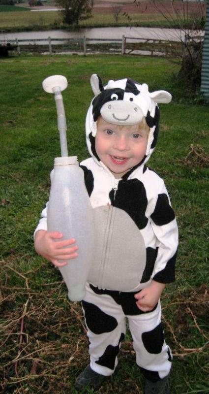 Owen in cow costume feeding calves