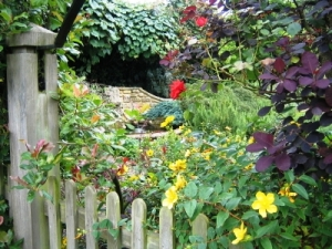 English country garden and gate with flowers