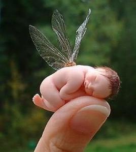tiny fairy baby