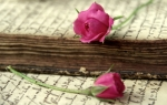 old love letter with roses