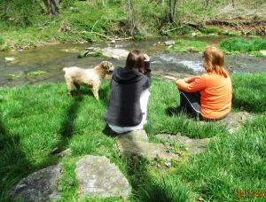Along the creek bank