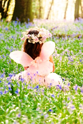 Scottish bluebell fairy