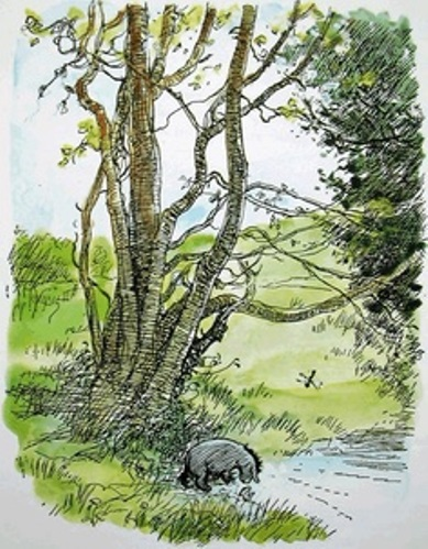Eeyore's Tree and stream by Ernest Shepard (British artist, 1879-1976)