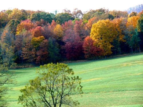 Foothills of the Alleghenies