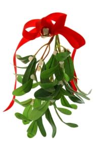 Christmas Mistletoe Isolated