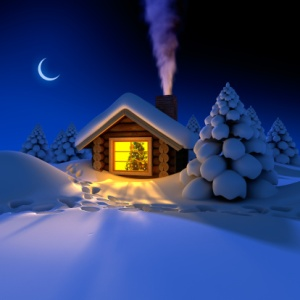 Little house in the snowy woods, Christmas