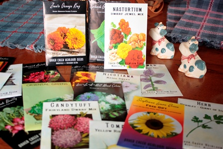 2 Heirloom Seeds packages on antique table resized