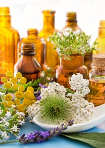 alternative medicine--herbs