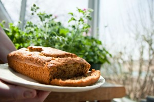 Gluten free bananna bread on sunporch