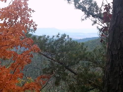 view from long run road.jpg2