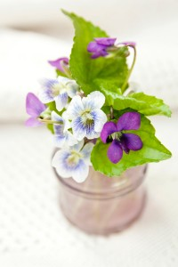 arrangement of violets in an old lavender bottle