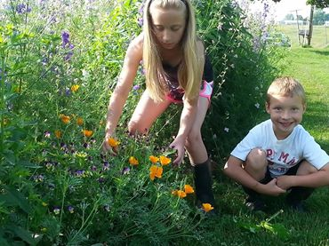 Emma and Owen in the flowers with poppies