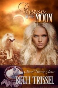 YA Fantasy Romance-Book 2