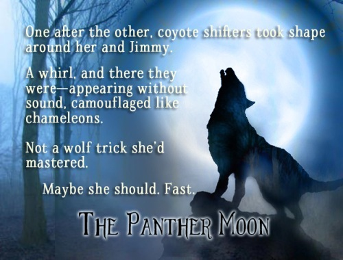 promo-image-for-the-panther-moon-jpg-1