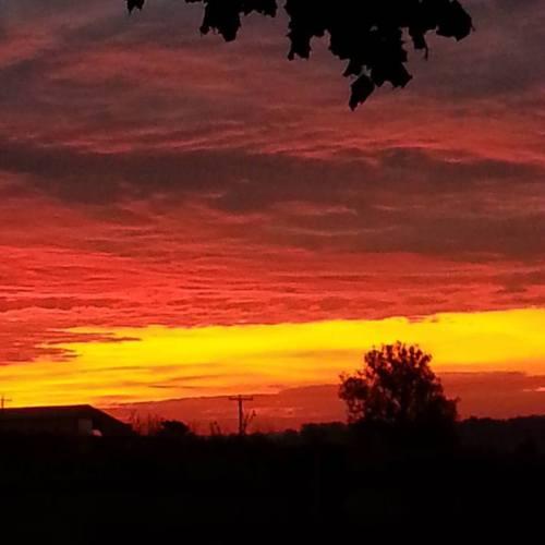 glorious-sunrise-on-the-farm