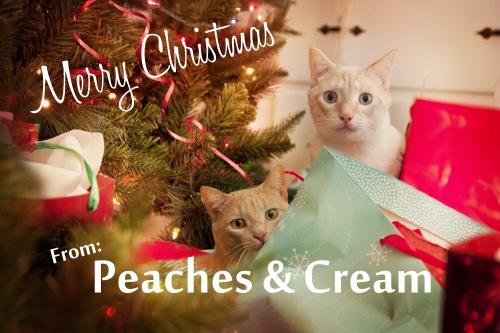 peaches-cream2015-jpg1