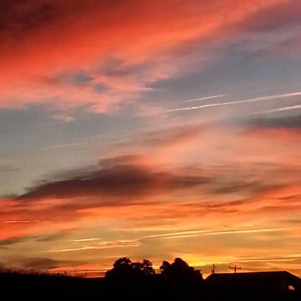 sunrise-of-beauty-on-the-farm